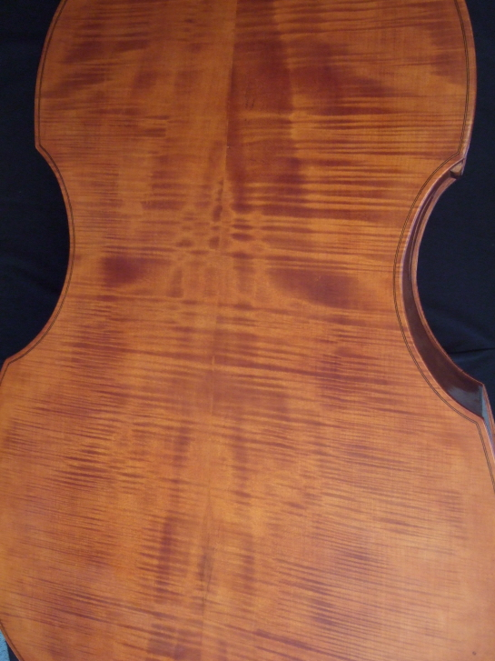 Malcolm Healey double bass back