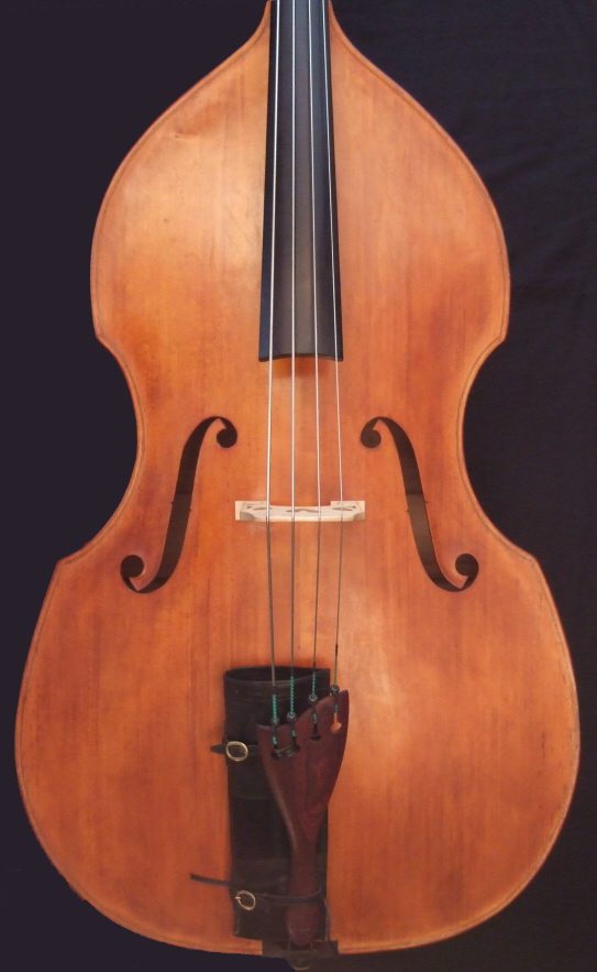 Malcolm Healey double bass front